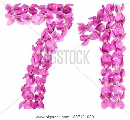 Arabic Numeral 71, Seventy One, From Flowers Of Viola, Isolated On White Background