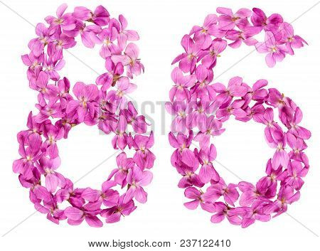 Arabic Numeral 86, Eighty Six, From Flowers Of Viola, Isolated On White Background
