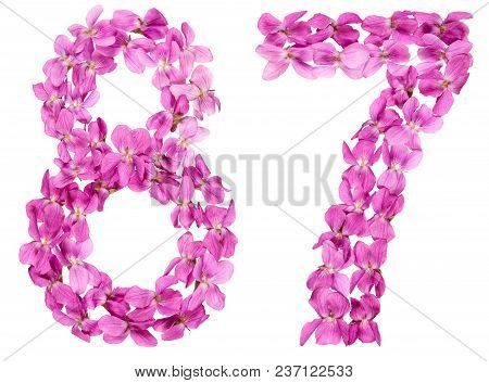 Arabic Numeral 87, Eighty Seven, From Flowers Of Viola, Isolated On White Background