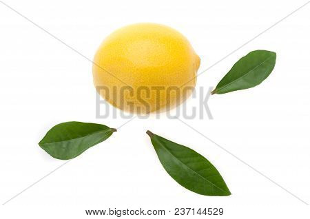 Fresh Bright Lemon With Three Green Leaves Around A Lemon On A White Background.