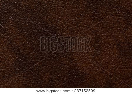 Extraordinary Leather Background In Saturated Brown Tone. High Resolution Photo.