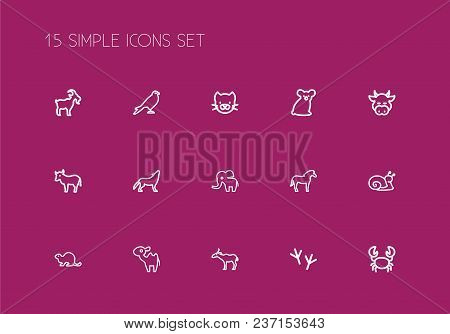 Set Of 15 Editable Zoology Icons Line Style. Includes Symbols Such As Stallion, Cattle, Snail And Mo