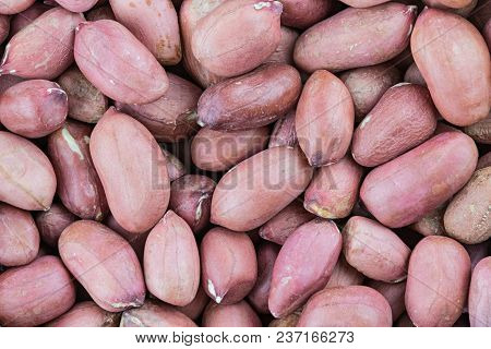 The Peanut Background Or Texture. The Macro Shot Is Made By Means Of Stacking Technology
