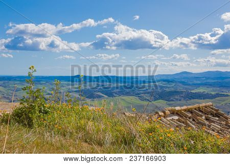 Beautiful View From A Green Hill With Yellow Flowers To A Tiled Roof And Fields Against A Blue Sky W