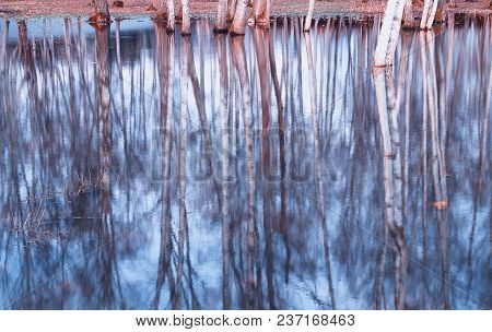 Trees In Spring Melted Waters Background Hd