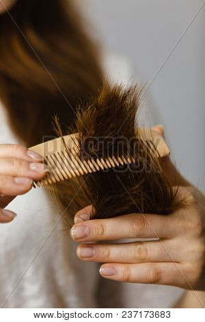 Woman Trying To Brush Dry Tangled Hair Ends. Healthy Haircare And Hairstyling Concept.