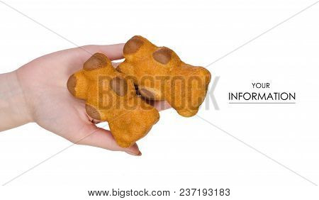 Biscuit In The Form Of A Bear In Hands Pattern On A White Background Isolation