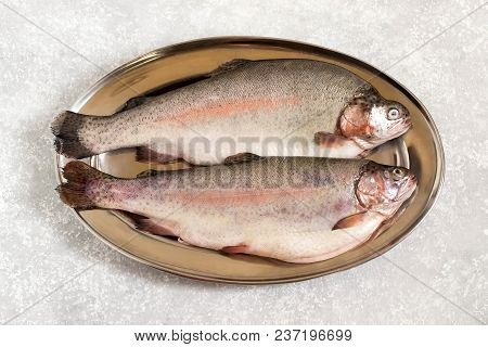 Two Fresh Trout On Metal Tray. Dietary And Healthy Food