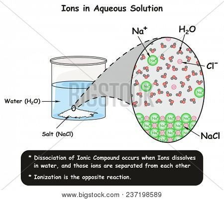 Ions in Aqueous Solution infographic diagram showing dissociation reaction of sodium chloride crystals in water and how ions separated for chemistry science education poster