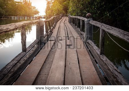Wood Walkway Path Over River And Through Tropical Forest