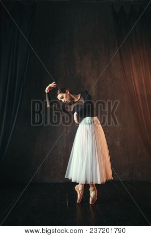 Classical ballet dancer in motion on the stage