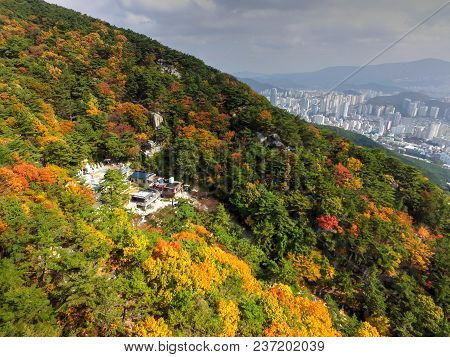 Autumn Of Okbul Temple In Geumjeong Mountain, Busan , South Korea, Asia When Nov-10-2017