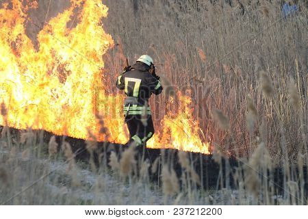 Firefighters Battle A Wildfire In Spring. Smoke Field And Fireman After Wildfire. Fire. Wildfire Bur
