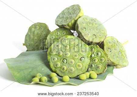 Lotus Seed And Pod Isolate On White