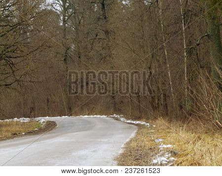 Forest road in the late autumn, in some places snow is already visible