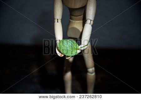 Wooden Toy In The Image Of A Man On A Dark Background In Hands With A Green Leaf 1