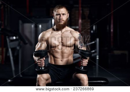 Young Athlete Doing Exercises In The Gym.bodybuilding Concept Background.