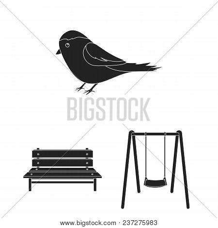 Park, Equipment Black Icons In Set Collection For Design. Walking And Rest Vector Symbol Stock  Illu