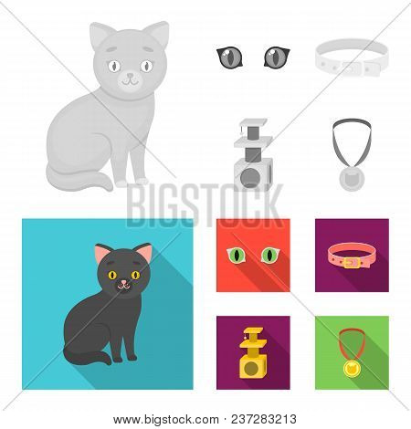 Cat Eyes, A Collar, A House For A Cat, A Medal On A Ribbon.cat Set Collection Icons In Monochrome, F