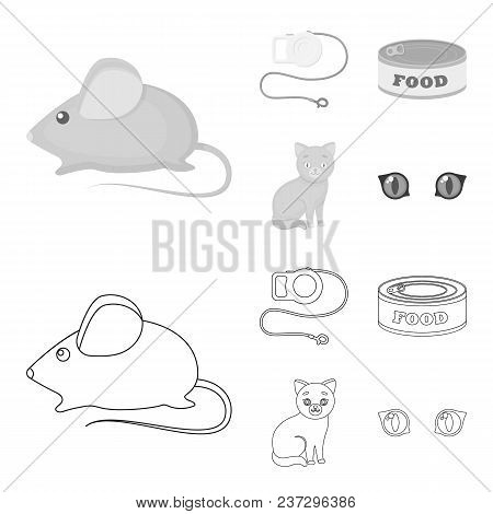 Mouse, Pet Leash, Pet Food, Kitten. Cat Set Collection Icons In Outline, Monochrome Style Vector Sym