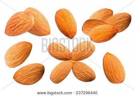 Isolated Nuts. Collection Of Sweet Almonds Isolated On White Background With Clipping Path As Packag