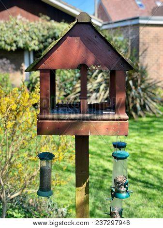 Garden bird table with hanging feeders