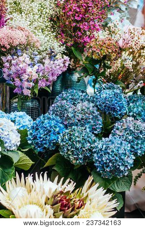 Beautiful Blue Hydrangea, Exotic Protea Flower Bouquet. Spotted On The Flower Market.
