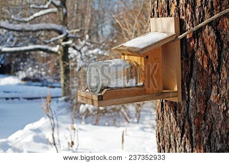 Self-made Bird Feeder Made Of Boards And Glass Jar Hanging On A Tree In The Park