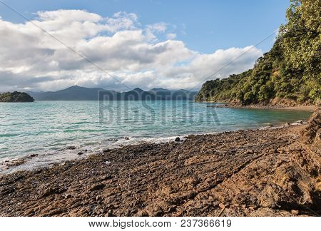 Queen Charlotte Sound In Marlborough Sounds, South Island, New Zealand