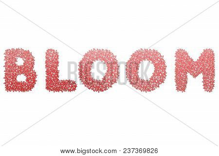 Bloom Text For Title Or Headline In 3d Style With Stroke Flower Petals