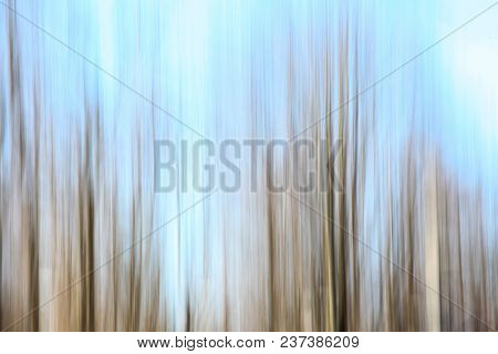 Abstract background from trees