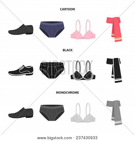 Male Shoes, Bra, Panties, Scarf, Leather. Clothing Set Collection Icons In Cartoon, Black, Monochrom