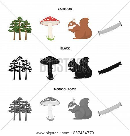 Pine, Poisonous Mushroom, Tree, Squirrel, Saw.forest Set Collection Icons In Cartoon, Black, Monochr