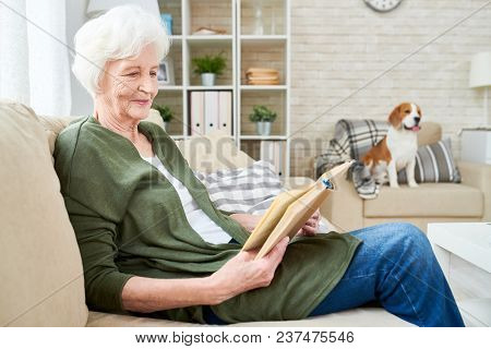 Content Curious Attractive Senior Woman Reading Book And Concentrated On Plot While Resting On Comfo