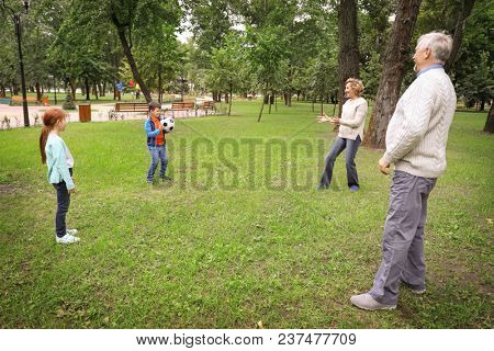 Senior man and woman playing with grandchildren in park