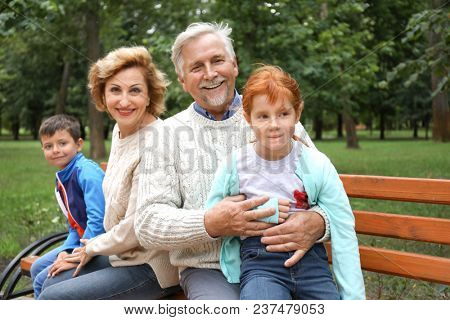 Senior couple and their grandchildren sitting on bench in park