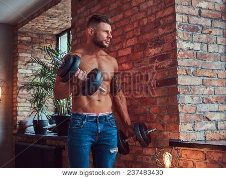 A Handsome Bearded Bodybuilder With Tattoo On His Arm, Doing The Exercises With Dumbbells, Standing