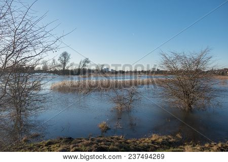 Rhine Flooded With Silhouettes Of Trees With A Blue Sky