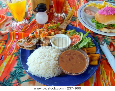 "belize food guidelines From its language to its food, the creole culture is an infectious one its origins date back to the late 1700s and early 1800s the creole (or ""kriol"") culture remains a staple culture of belize."