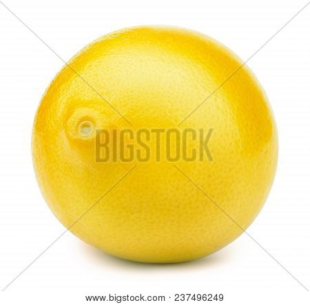 Fresh Lemon Fruit Isolated On The White Background With Clipping Path. One Of The Best Isolated Lemo
