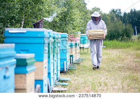 Full Length Portrait Of Modern Beekeeper Wearing Protective Suit Walking By Beehive Holding Hive Fra