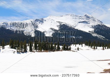 Spring Time At Molas Pass In Colorado