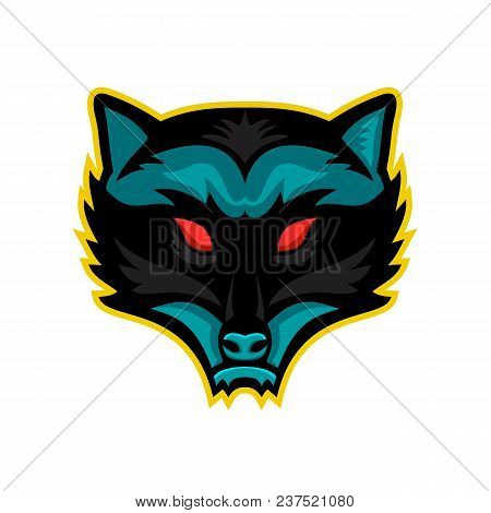 Mascot Icon Illustration Of Head Of An Angry North American Raccoon, Northern Raccoon, Or Racoon Vie
