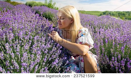 Beautiful Woman In Dress Sitting In Lavender Field And Smelling Flowers