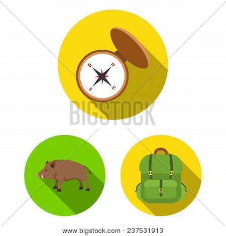 Hunting And Trophy Flat Icons In Set Collection For Design. Hunting And Equipment Vector Symbol Stoc