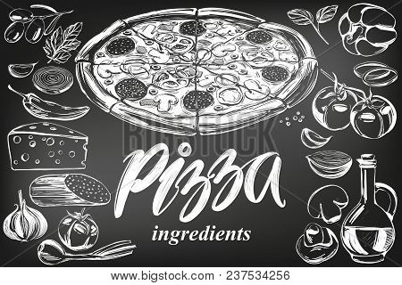 Italian Pizza , Collection Of Pizza With Ingredients, Logo, Hand Drawn Vector Illustration Realistic