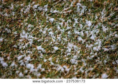 White snow covers green grass. Frozen nature in winter time background, above view.