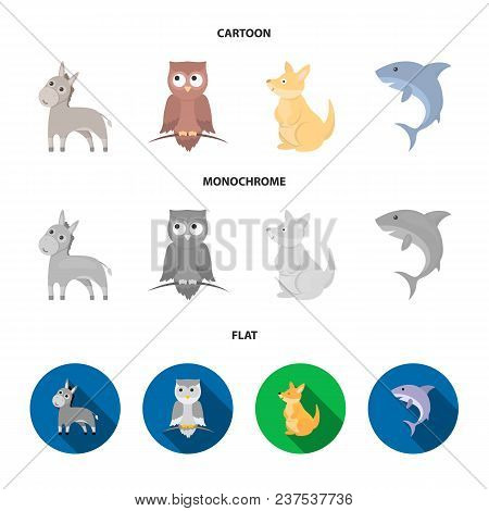 Donkey, Owl, Kangaroo, Shark.animal Set Collection Icons In Cartoon, Flat, Monochrome Style Vector S