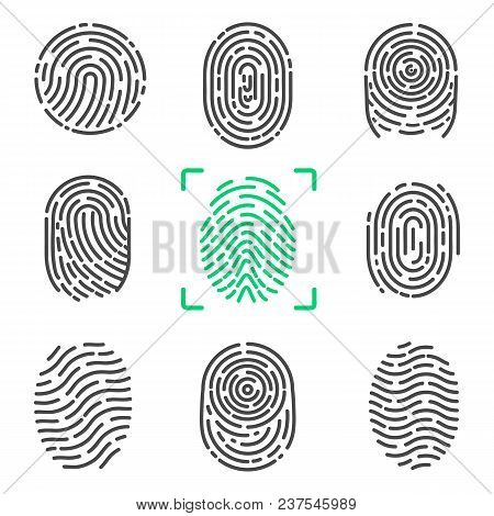 Collection Of Fingerprints, Colorless Images Of Prints Of Human And Colorful One In Frame, Items On