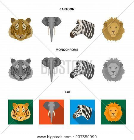 Tiger, Lion, Elephant, Zebra, Realistic Animals Set Collection Icons In Cartoon, Flat, Monochrome St